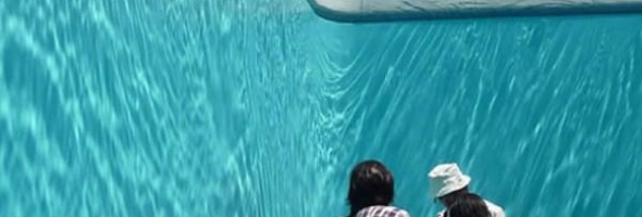Artist Tricks The Eye With Mind Bending Swimming Pool
