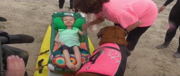 (Photo courtesy of Surf Dog Ricochet/YouTube page)