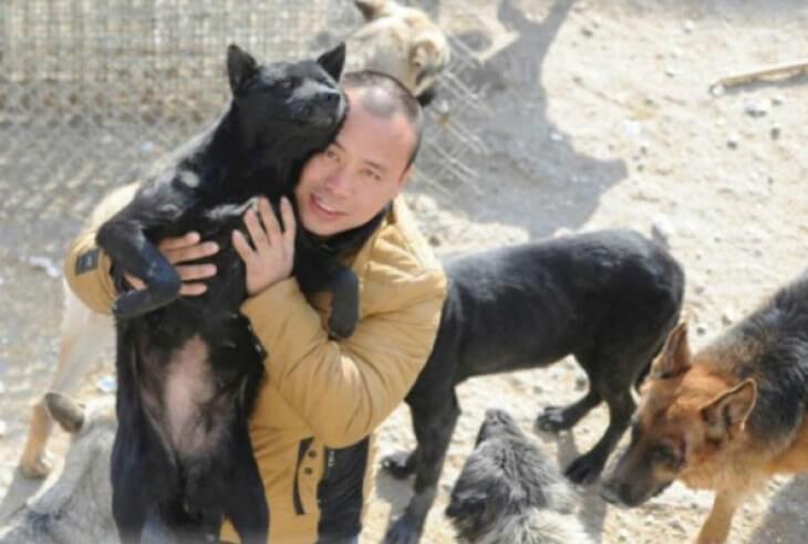 Purchase Dog Slaughterhouse And Set Up Shelter