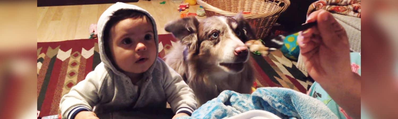 dog-says-mama2