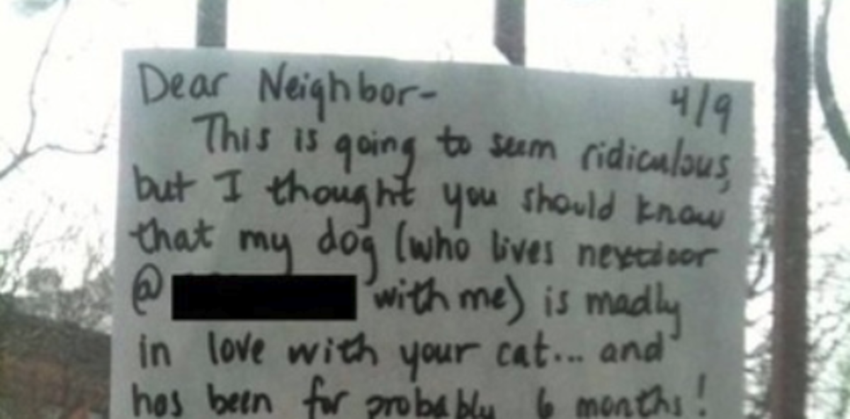 Dear Neighbors My Dog Is In Love With Your Cat