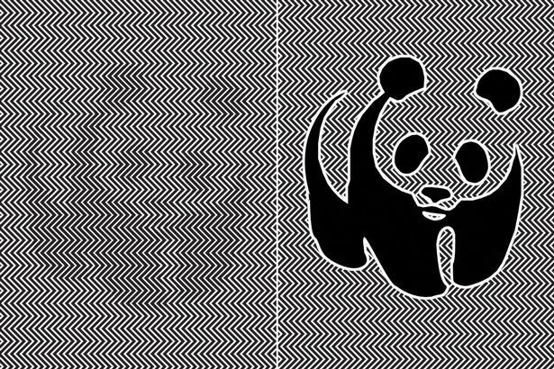 A-panda-hidden-in-this-black-and-white-image-split